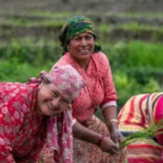 women farming in nepal